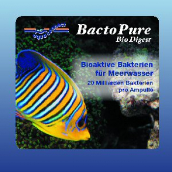 Aqua Connect BactoPure bio digest 6 Amp.