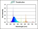 ATI Purple plus 24W